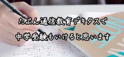 デキタスの口コミ⑤中学受験もいける内容